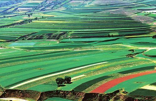 右玉上榜国家生态文明建设示范县