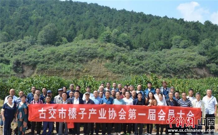 山西古交首家农业产业协会成立
