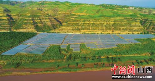 让枣树住进大棚里 山西临县红枣产业提质增效探新路