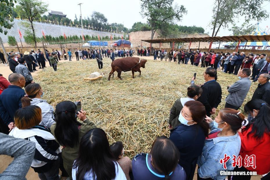 """""""2020中国农民丰收节后土祭祀文化仪式在山西举行"""