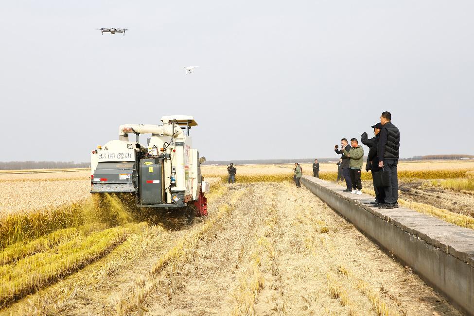 碧桂园在建三江打造全球最大无人化农场,助力中国农业插上高科技翅膀