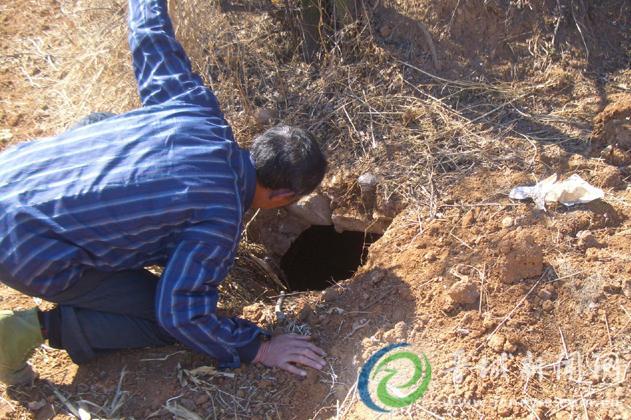 山西晋城:盗墓贼猖獗,一村有19座坟被挖